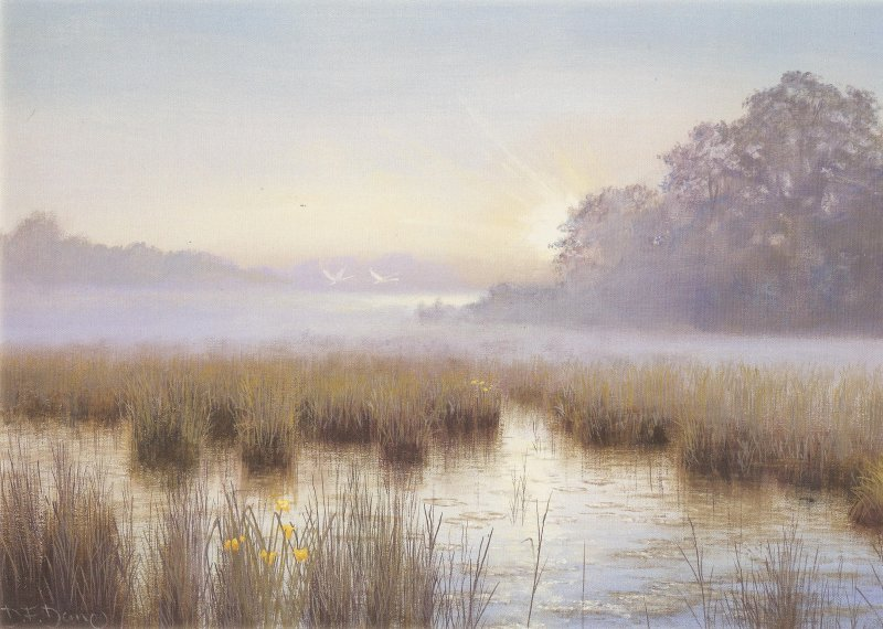 Towards the Light - Dawn Sutton Fen