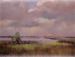 Early Summer's Day - Hickling