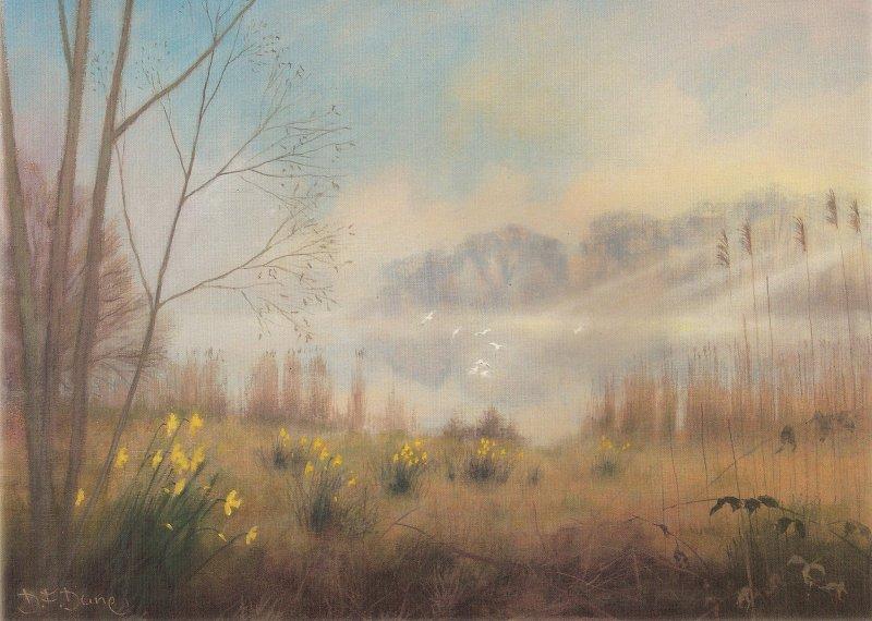 Sunrise Through the Mist - Barton Broad