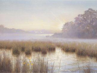 Towards the Light - Dawn Sutton Fen