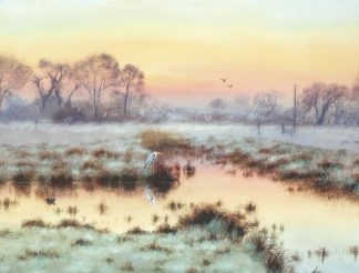 Winter Dawn - Sutton Fen
