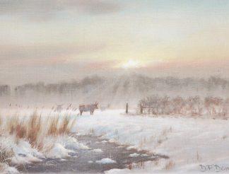 Winter at Longmoor