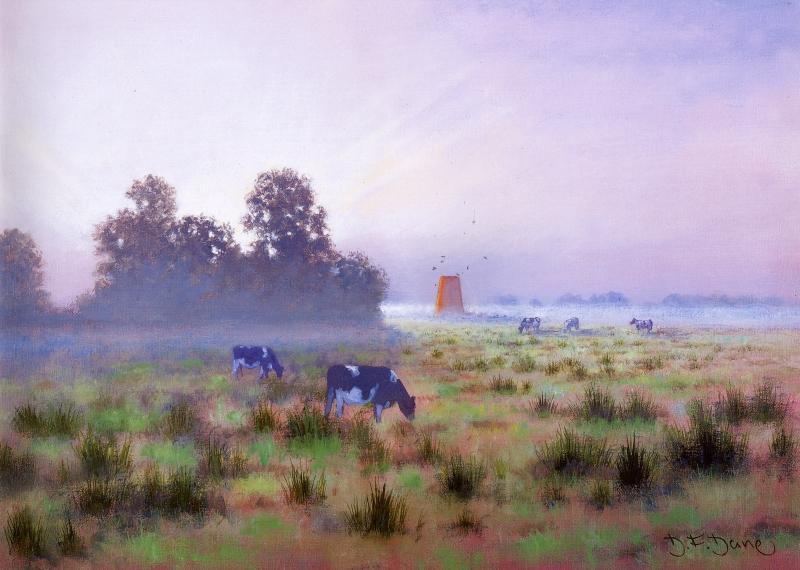 Summer Sunrise, Ludham Marshes