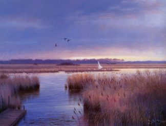 Winter Afternoon - Hickling