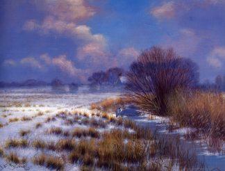 Winter at Carlton Marshes