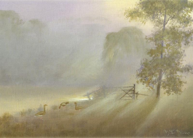 Sunlight Through Mist